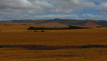 South Africa Driving Tour with Classic Travelling - Caledon